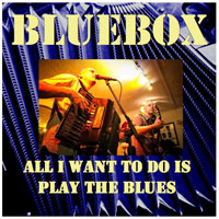 All I want to do is play the blues by Bluebox